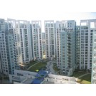 4 and 1 sq bhk flat for rent in close north with area of 3035 sqft At 45000