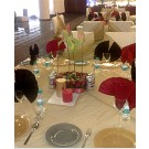 Kwality The Catering Company