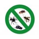 Safehom pest control services