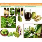 Noni Juice to Improve Your Health
