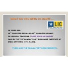 LIC Insurance Financial Advisor