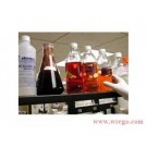 SSD CHEMICALS CONSULTING NETWORK NEW DELHI-INDIA