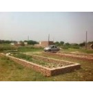 Residential Plot Available for sale in Sector-83 Gurgaon