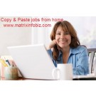 Online Offline Copy Paste And Typing Form Filling Data Entrs.comy Jobs