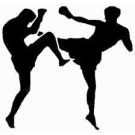 kungfu Martial Arts Self Defense Classes in Kung Fu Academy Lucknow