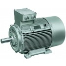 Buy Foot mounted 2- pole motors Online at Steelsparrow