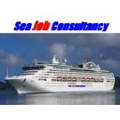 Merchant Navy Jobs for freshers