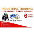 Training in Oracle in patna at IISPL