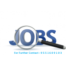 Development  Officer Customer