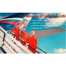 Airline-All Courses+Jobs