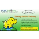 Hadoop Big Data Online Training