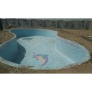 swimming pool contractor in Maharashtra