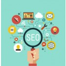 SEO Company in Pune Maximus Leads