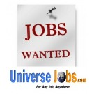 Salesforce Developer - Universejobs