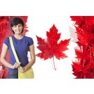 Apply For Canada 2016-17 Intake With The Chopras
