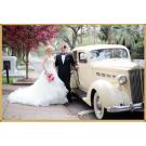wedding planners Savannah ga