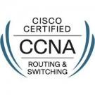 Ccna Training in Delhi