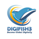 Digital Marketing Agency Online Marketing Company India Digifish3