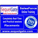 Complete Practical SalesForce CRM ADM & DEV Online Trainings @ Sequelgate