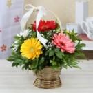 Send Flower to Amritsar