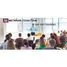 SAP ERP Training Institute in Jamshedpur, Metaphor Consulting