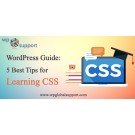 Best Tips  to Learn CSS