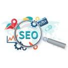 Digital marketing service in delhi ncr
