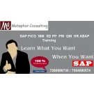SAP ERP (Online and Classroom) Training in Metaphor Consulting