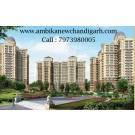 2 Bhk Flats Sale in Mullanpur | Florence park New Chandigarh