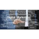 digital marketing job