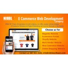 Ecommerce Website Design Development Service