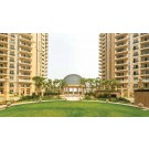 Ace Golfshire Noida call 9278057805 And Book Your Dream Home
