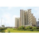 M3M Woodshire : Ready-to-Move-in 3BHK Apartments