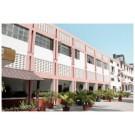 MGN College of Education in Adarsh Nagar Jalandhar