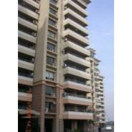 3 BHK For Rent In Central Park-I- Sector-42 Gurgaon