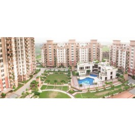 3 BHK Flats For Rent In Orchid Gardens Suncity Gurgaon