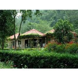 Tree House Cottages Jaipur