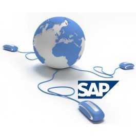 SAP ESS MSS online training and Live project training in world wide