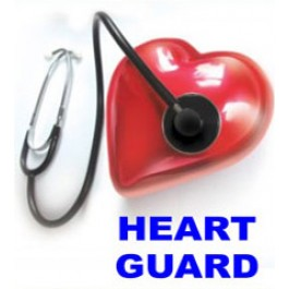 ANTI RADIATION HEART GUARD IS A SOLUTION FOR THE TREATMENT OF HYPERTENSION