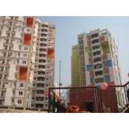 2 Bedroom Flat On rent at Sonari Rent - 4000 Per Month