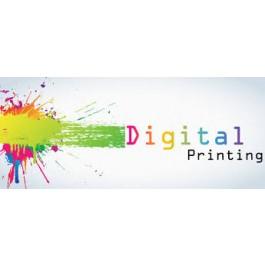 Digital Printing,Flex Printing,Printing on Vinyl- Brochure