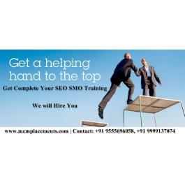 Fresher B.tech BCA MCA B.sc IT  SEO Training in Delhi