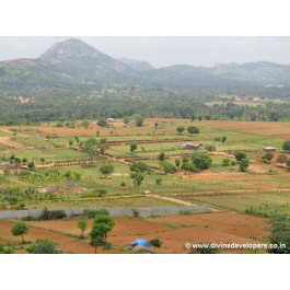 Convenient farm lands for sale within The Bangalore City just Rs.277/sq,ft, kanakapura road