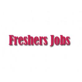 Jobs for Graduate B.A.B.Sc B.Com freshers for Data Entry Operators