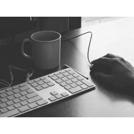 Online jobs on Frisklancer.com upto $5000 a month