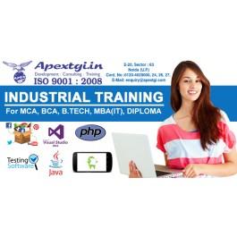 php internship in noida