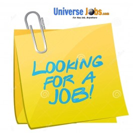 Hiring for Back office executive - Jobs in Orissa