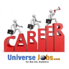 Developer-web Engineering - Jobs in Bangalore