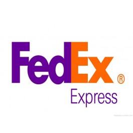 Fedex International Gurgaon