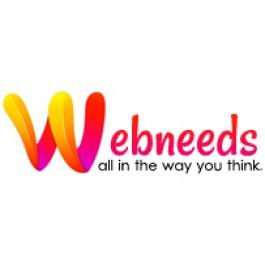 Best Website Designing & Development Company